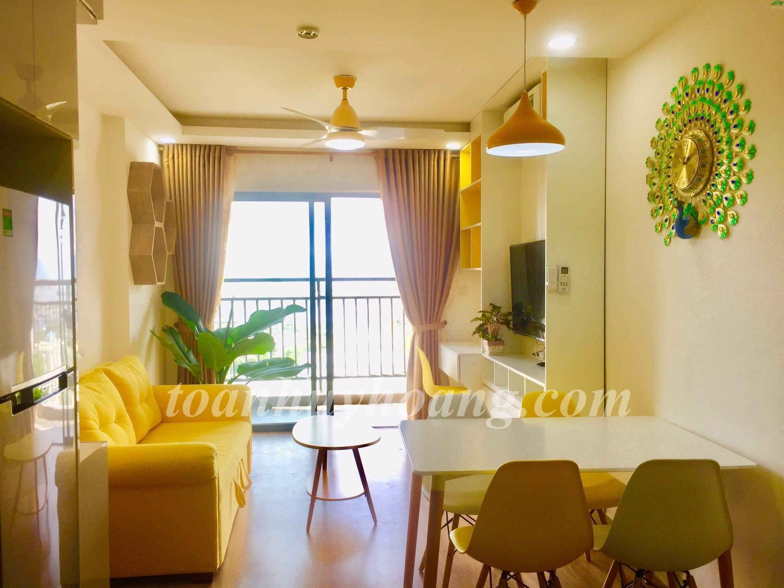 1bdr apartment in son tra